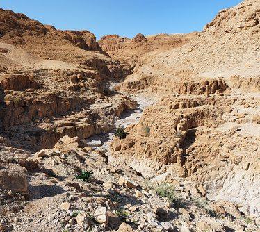 Ущелье в пустыне в районе Кумрана Крик вблизи Мертвого моря