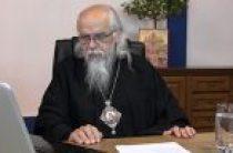 Председатель Синодального отдела по церковной благотворительности провел интернет-семинар по пастырским вопросам социального служения